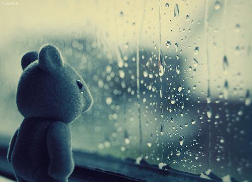solteira, sozinha urso chorando, me sinto sozinha
